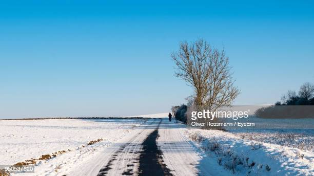 Bare Trees On Snow Covered Landscape Against Clear Blue Sky