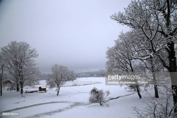 Bare Trees On Snow Covered Landscape Against Sky