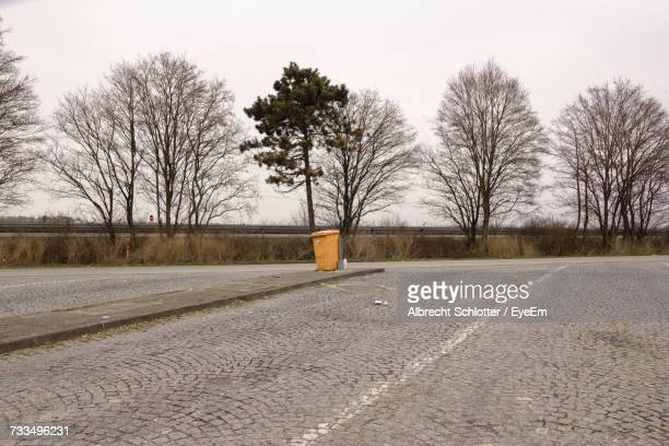 bare trees on snow covered road against sky - albrecht schlotter stock photos and pictures