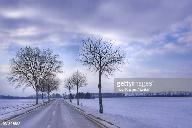Bare Trees On Snow Covered Road Against Sky