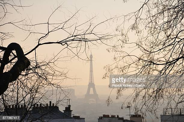 Bare Trees With Eiffel Tower In Background At Sunset