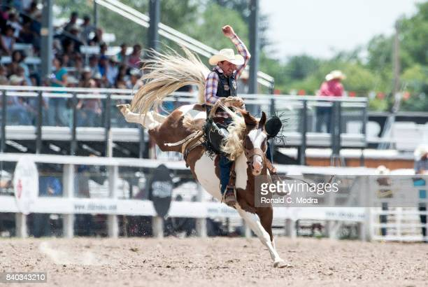 Bareback bronc riderDean Wadsworth rides during the Frontier Days Rodeo on July 23 2017 in Cheyenne Wyoming
