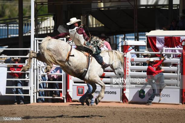 Bareback rider Richie Champion of Dublin TX won his event with this ride at the Calgary Stampede on July 15 2018 at Stampede Park in Calgary AB