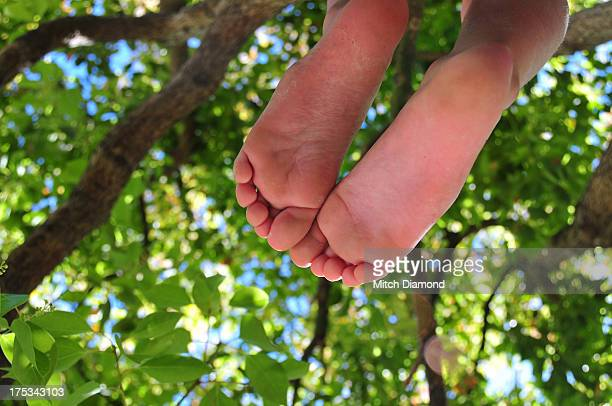 barefoot girl in tree