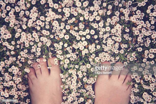 Barefoot on the prairie in bloom