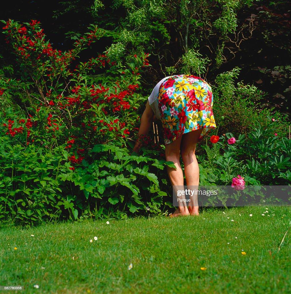 Mature women in skirts bent over