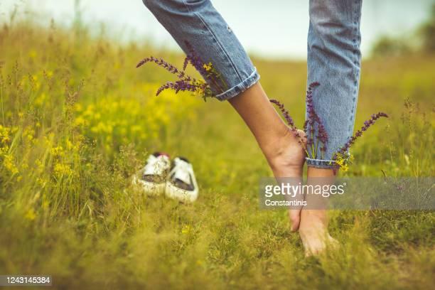 giovane donna scalzo in idilliaco campo rurale di fiori selvatici - scalzo foto e immagini stock