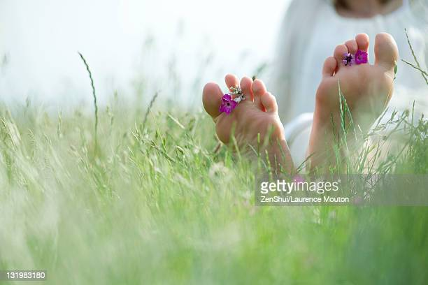 barefoot young woman sitting in grass with wildflowers between toes, cropped - barfuß stock-fotos und bilder