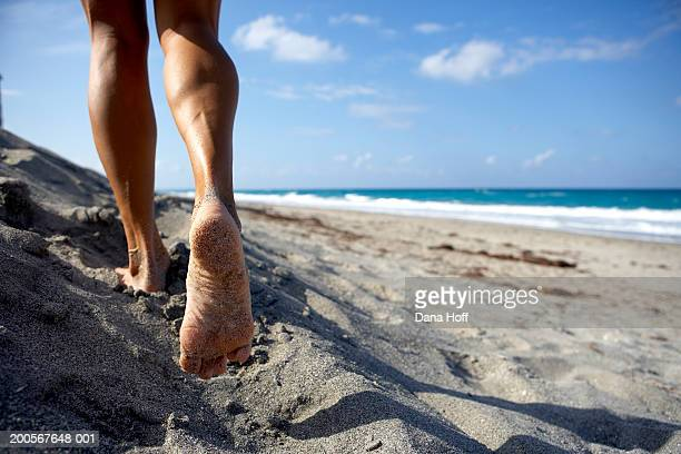 Barefooted woman walking on beach, low section, rear view