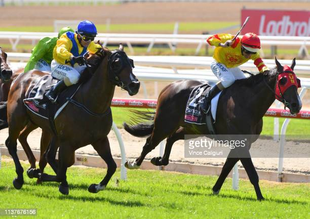 Barend Vorster riding Vinco defeating Power Scheme in Race 5 Martin Collins Polytrack Sires during Mornington Cup Day at Mornington Racecourse on...