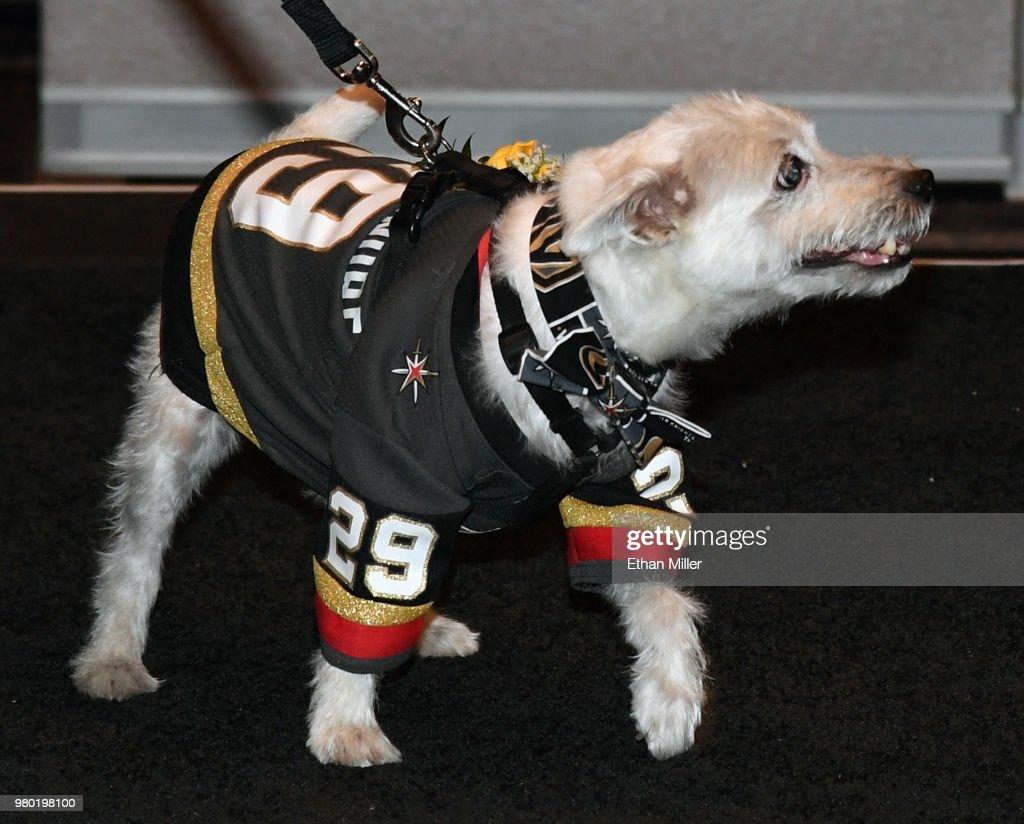 2018 NHL Awards - Arrivals : News Photo