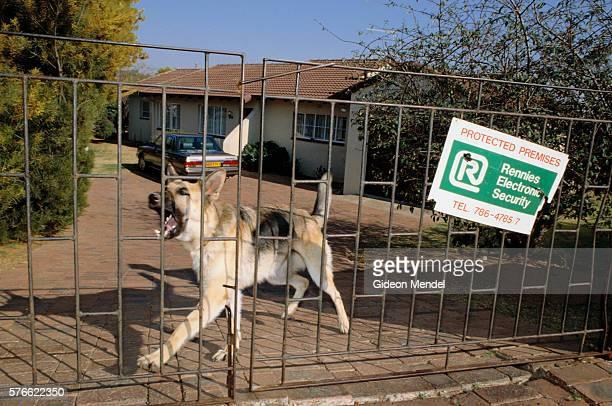 Barking Guard Dog