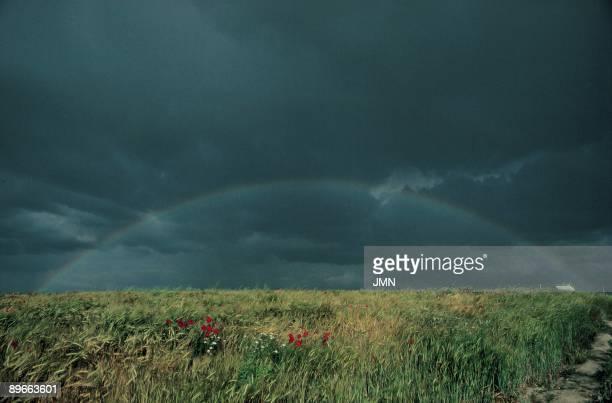 Barley field View of a rainbow on a barley field Otero de Sariegos County of Zamora