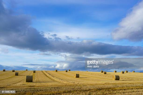 Barley straw bailing after barley harvest near Port Mahadnock, Scotland