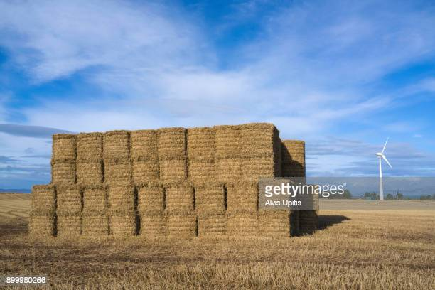 Barley straw bales and wind turbine in farm field near Portmahomack, Scotland