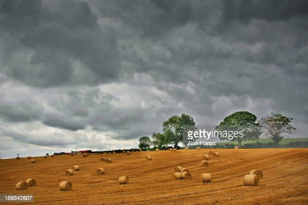CONTENT] Barley straw bales strewn across a field after harvest near Loughgall County Armagh Northern Ireland Taken 5/8/11
