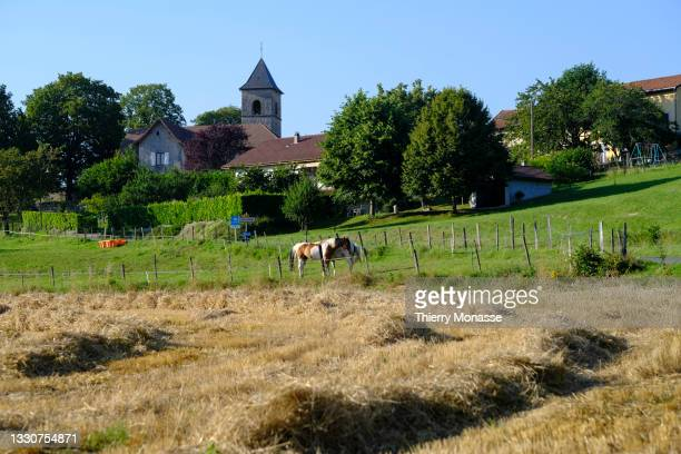 Barley straw is drying out in a field on July 20 in Seillonnaz, France.