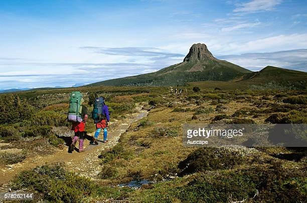 Barn Bluff 1559 m and bushwalkers on the Overland Track Cradle MountainLake St Clair National Park Tasmania Australia