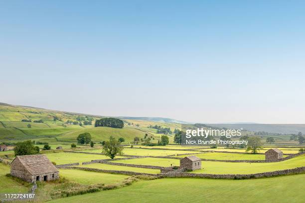 barn house, yorkshire dales national park, yorkshire, uk - york yorkshire stock pictures, royalty-free photos & images