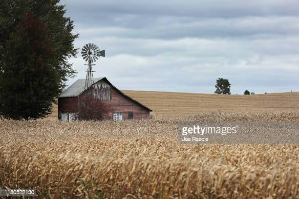 Barn is seen in a field of corn on October 11, 2019 in Newton, Iowa. The 2020 Iowa Democratic caucuses will take place on February 3 making it the...