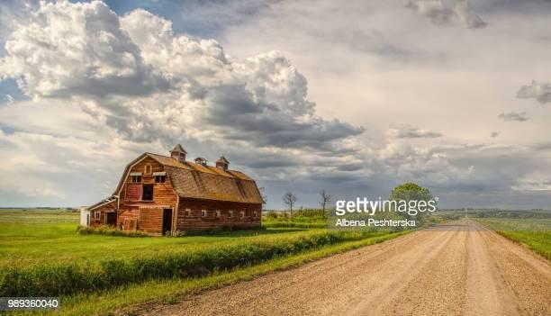 barn near dirt road in fair weather - fattoria foto e immagini stock