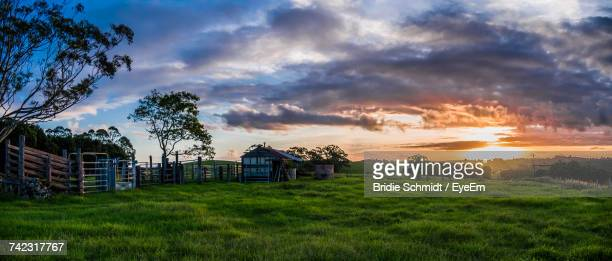 barn on field against sky during sunset - farmhouse stock pictures, royalty-free photos & images