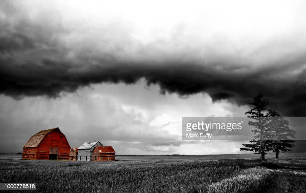 barn storm - mark duffy stock photos and pictures