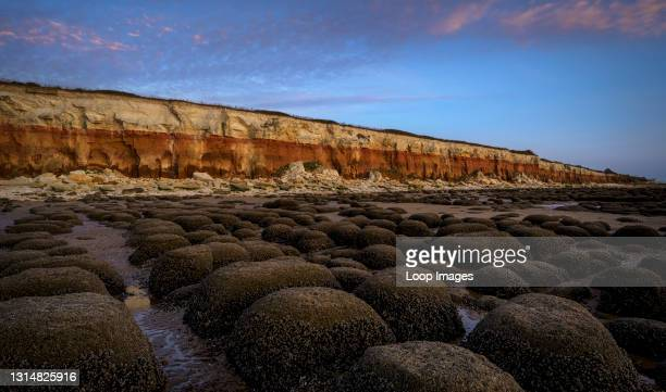 Barnacle encrusted bumps in front of the red and white striped cliffs of Hunstanton beach.