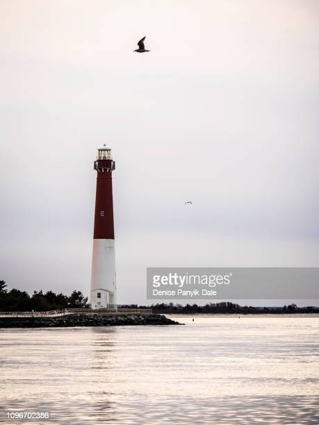 barnegat light - panyik-dale stock photos and pictures