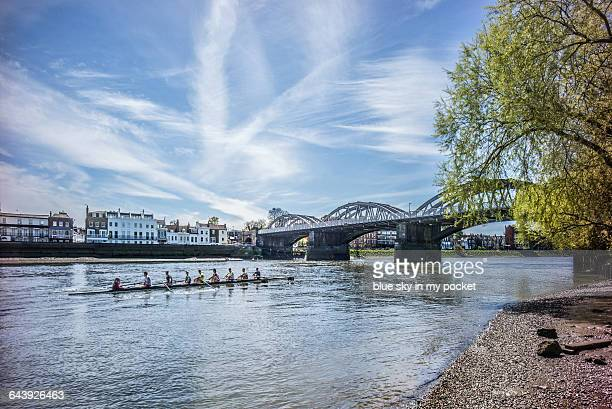 barnes bridge and the river thames - richmond upon thames stock pictures, royalty-free photos & images