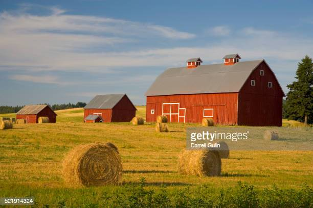 barns and hay bales in field - barn stock pictures, royalty-free photos & images