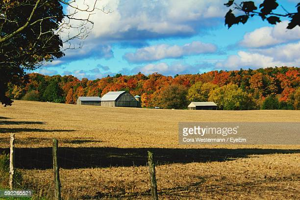 Barns In Field By Trees Against Sky