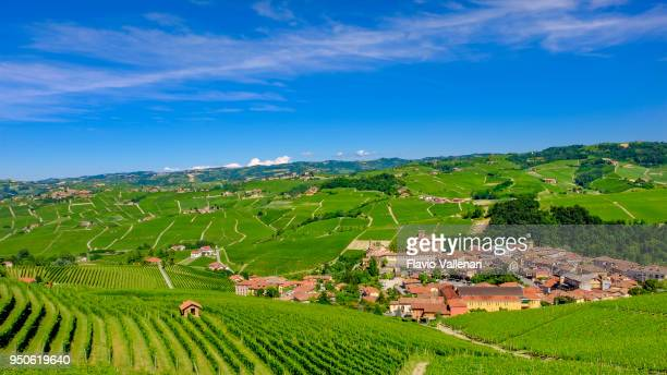 Barolo inmitten seiner Weinberge in den Langhe, einer hügeligen Gegend, meist basierend auf Weinbau und bekannt für die Herstellung von Barolo Wein. Provinz von Cuneo, Piemont, Italien