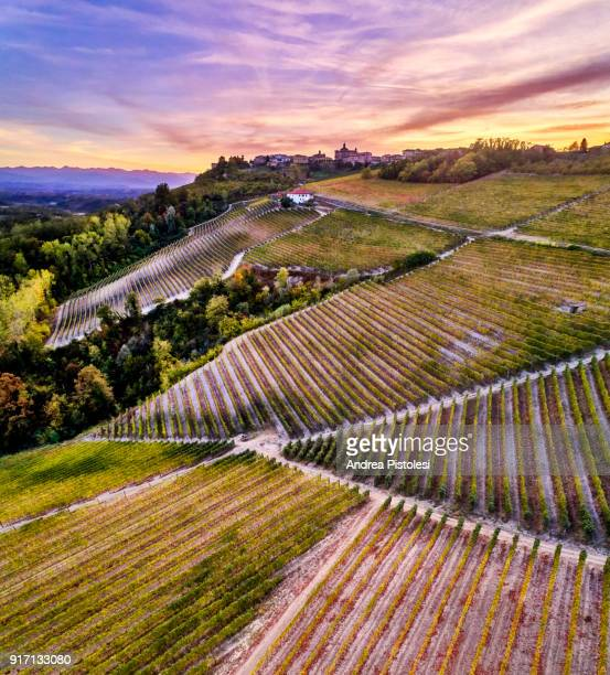 Barolo Wine Region in Autum, Piedmont, Italy