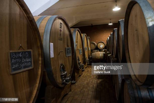 Barolo wood barrels in the cellars of Bel Colle during the grape harvest for Barolo wine on October 16 2019 in Verduno Italy