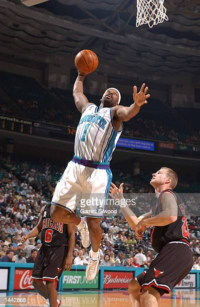 Baron Davis of the Charlotte Hornets dunks as Fred Hoiberg of the Chicago Bulls looks on at the Charlotte Coliseum in Charlotte North Carolina...