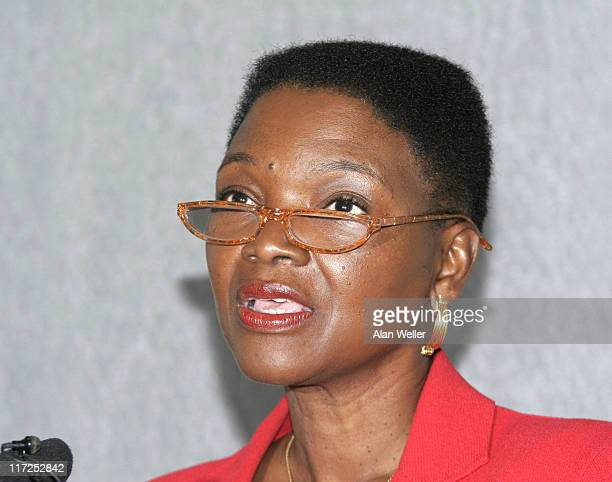 Baroness Amos during Global Campaign To End Fistula Press Briefing at The Royal College of Pathologists in London Great Britain