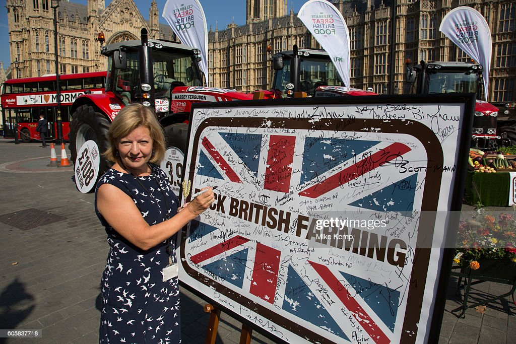 Baroness Jones of Whitchurch at the National Farmers Union (NFU) took machinery, produce, farmers and staff to Westminster to encourage Members of Parliament to back British farming, post Brexit on 14th September 2016 in London, United Kingdom. MPs were encouraged to sign the NFUs pledge and wear a British wheat and wool pin badge to show their support.