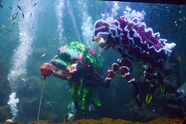 Preparation Of Chinese New Year Lion Dance Performances Pictures - 6 amazing underwater attractions