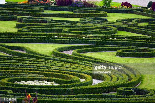 Baroque garden and hedges