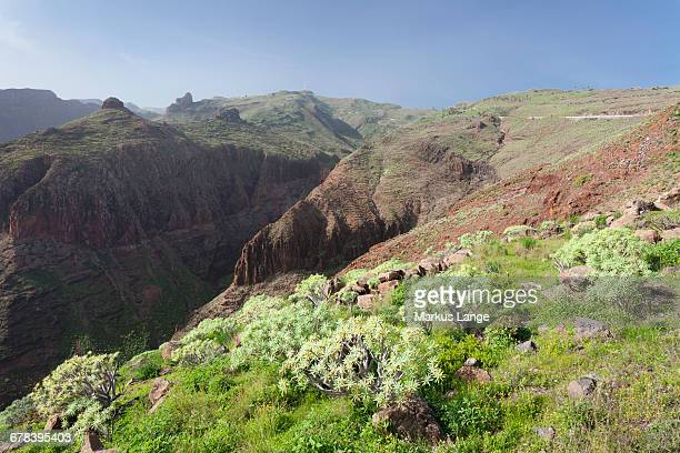 Barranco de Vera Valley, Roque del Sombrero Mountain, near San Sebastian, La Gomera, Canary Islands, Spain, Europe