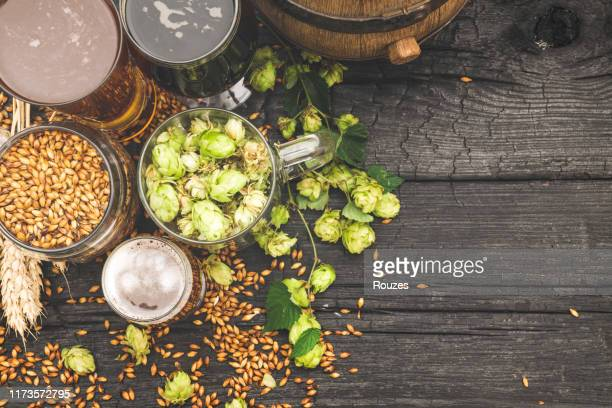 barrel and glass beer with brewing ingredients. - brewery stock pictures, royalty-free photos & images