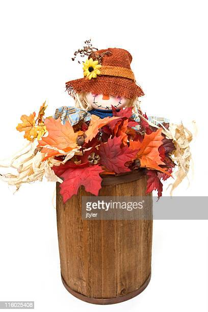 barrel of leaves - scarecrow stock photos and pictures