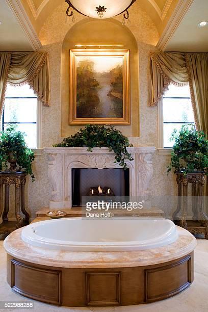 Barrel Vault over Bathtub in Front of Fireplace