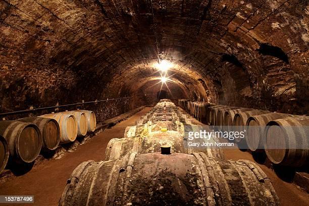 barrels in a wine cellar in France