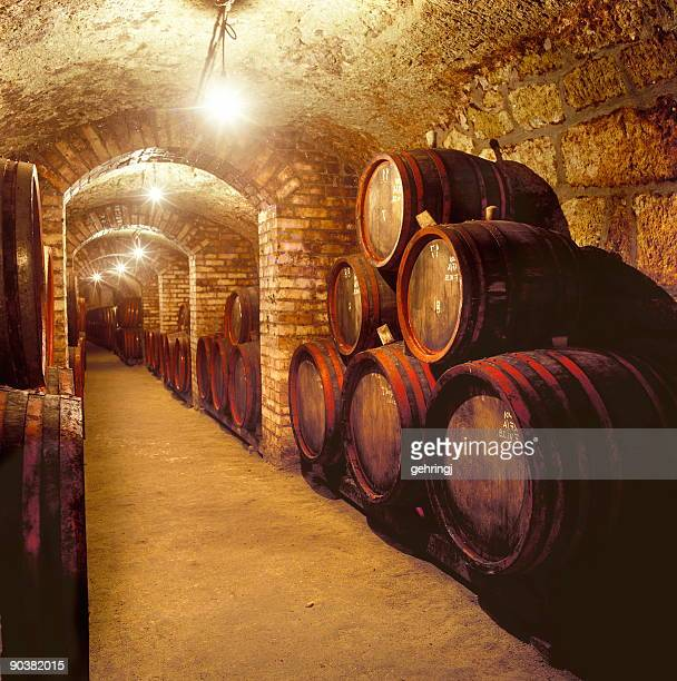 Barili in una cantina di vini