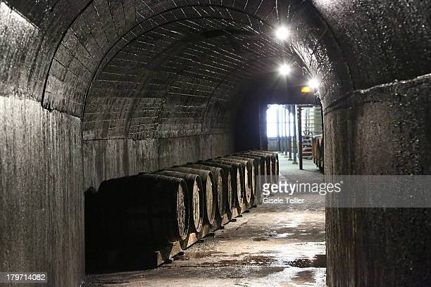 Barrels of Calvados are stored at the production facility of Calvados Morin in the Lower Normandy region on August 13 2013 in IvrylaBataille France...