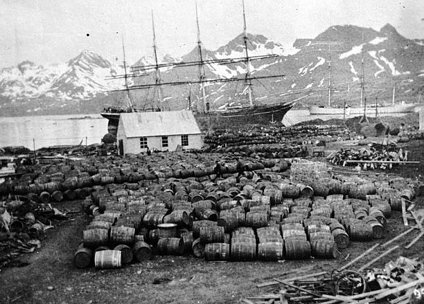 Barrels piled up at a whaling station in a mountainous...