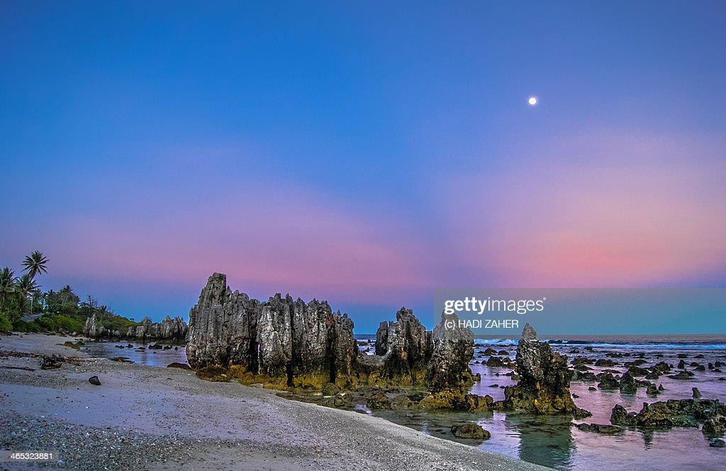 Barren Beauty | Anibare Beach | Nauru : Stock Photo