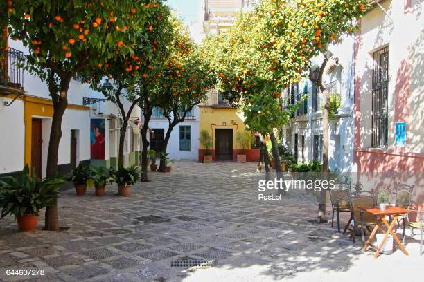 barrio santa cruz siviglia - seville stock pictures, royalty-free photos & images